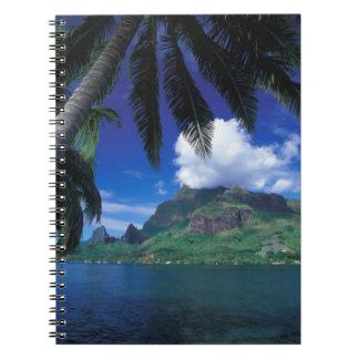 French Polynesia, Moorea. Cooks Bay. Green Notebook