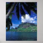 French Polynesia, Moorea. Cooks Bay. Green Print