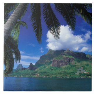 French Polynesia, Moorea. Cooks Bay. Green Large Square Tile