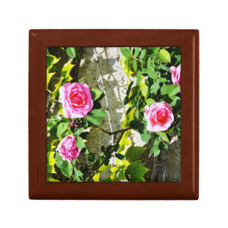 French roses macro photography gift box