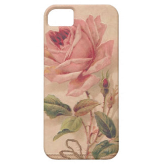 French Victorian Pink Rose iPhone 5 Cover