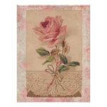 French Victorian Pink Rose Poster
