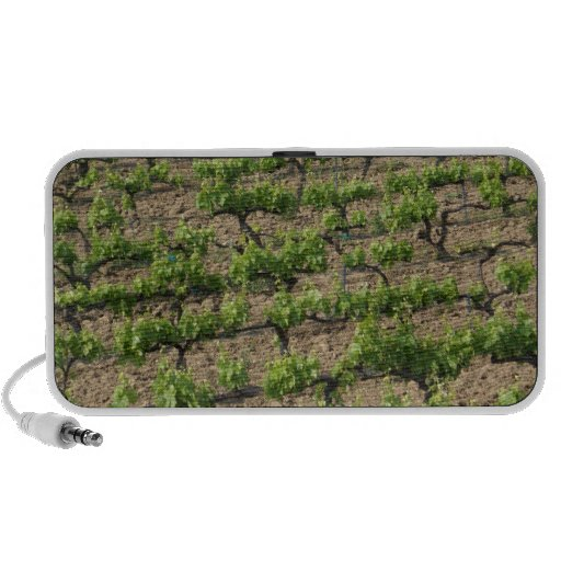 French Vineyard iPhone Speakers