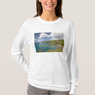 FRENCH WEST INDIES (FWI), Guadaloupe, Basse, T-Shirt