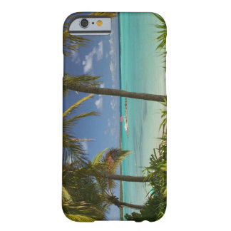 French West Indies, Guadaloupe, Grande Terre, 2 Barely There iPhone 6 Case