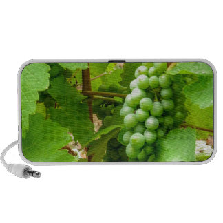 french wine mini speaker