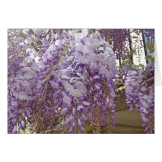 French Wisteria Card