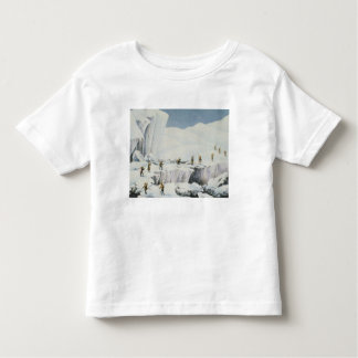 Frequent Appearance of the Ice with Bridges of Sno Toddler T-Shirt