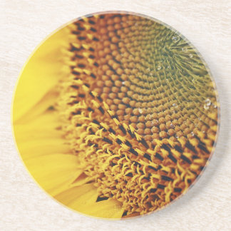 Fresh and Golden Sunflower Coaster