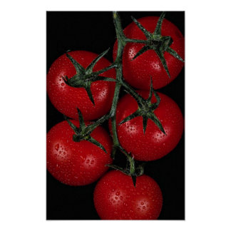 Fresh and juicy red tomatoes poster