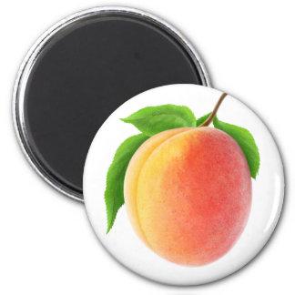 Fresh apricot magnet
