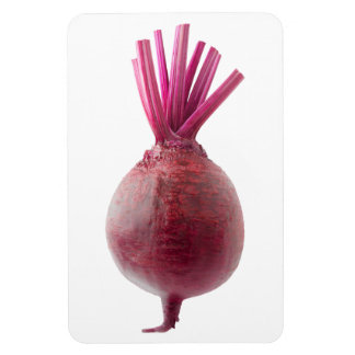 Fresh beetroot magnet
