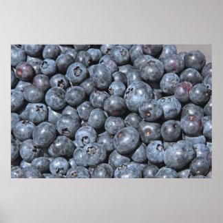Fresh Blueberries on Canvas Print