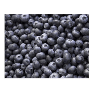 Fresh blueberries postcard
