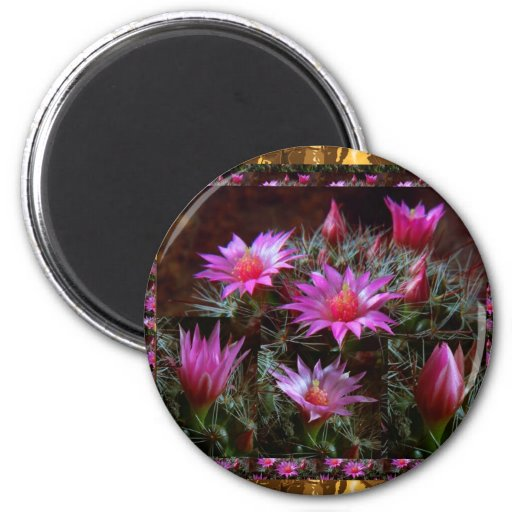 Fresh CACTUS Cacti Flower: Wild Exotic Floral Show Refrigerator Magnets