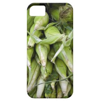 Fresh corn in market iPhone 5 case