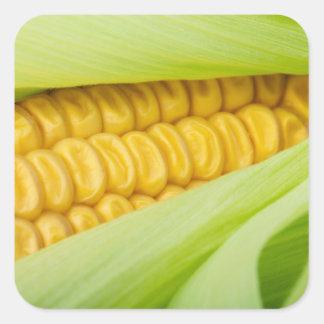 Fresh Corn stickers
