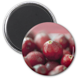 Fresh Cranberries Magnet