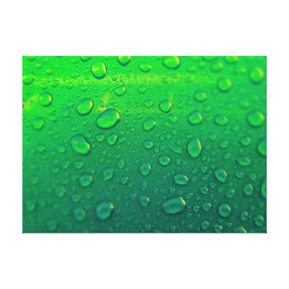 fresh drops of water on green background canvas print