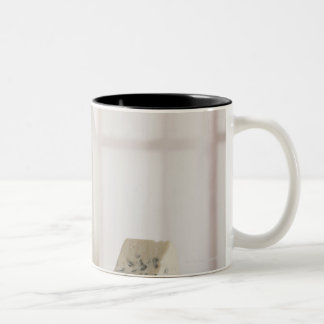 Fresh eggs cheese and milk on counter Two-Tone coffee mug