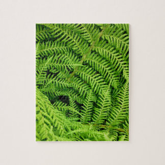 Fresh Ferns Jigsaw Puzzle