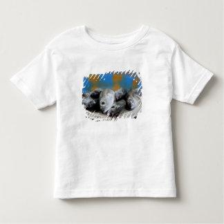 Fresh fish on fish market Mercado de Peixe), Toddler T-Shirt