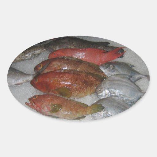 Fresh fish oval sticker zazzle for Fresh fish company
