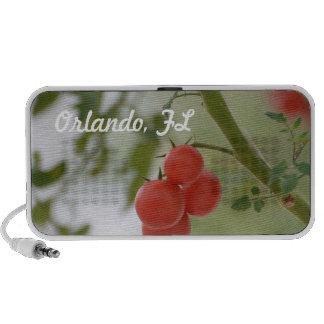 Fresh Florida Tomatos iPod Speaker