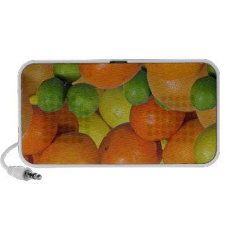 fresh fruit travelling speaker