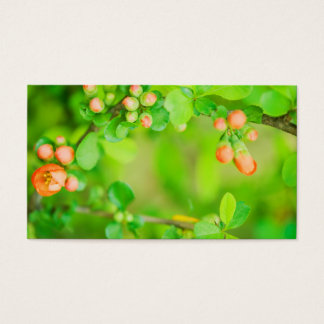 Fresh green and red flowers business card