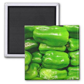 Fresh green capsicum magnet