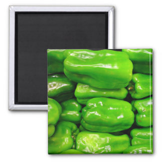 Fresh green capsicum square magnet