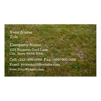 Fresh Green Grass Background Business Card