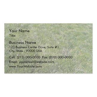 Fresh Green Grass Background Business Cards