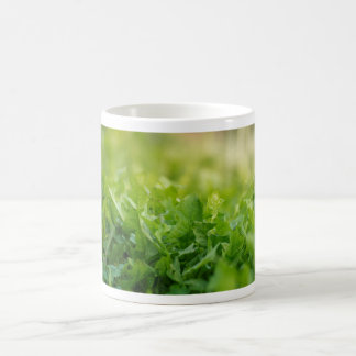 Fresh green grass coffee mug