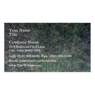 Fresh Green Grass Landscape Business Card Templates