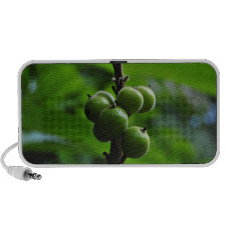 Fresh Green Nature PC Speakers