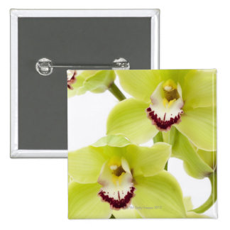 Fresh Green Orchid - Isolated on white 15 Cm Square Badge