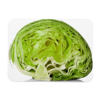 Fresh iceberg lettuce cut in half, on white magnet