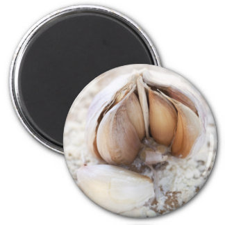 Fresh Italian Garlic Magnet