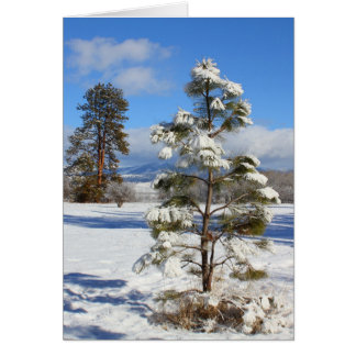 Fresh January snow Greeting Card