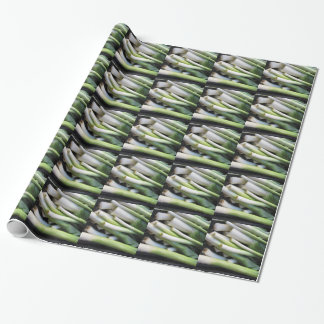 Fresh leeks wrapping paper