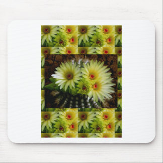 FRESH look CACTUS CACTI Flower Show: Greetings Mouse Pad