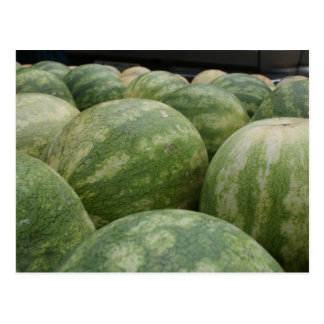 Fresh Melons Postcard
