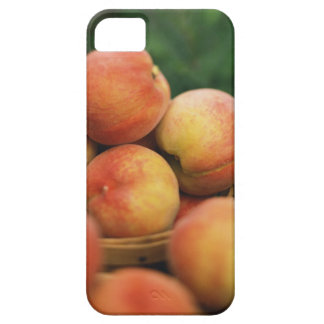 Fresh peaches iPhone 5 case