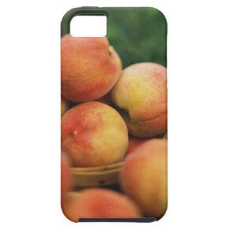Fresh peaches iPhone 5 cover