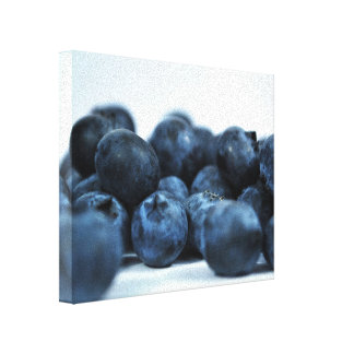 Fresh Ripe Blueberries Gallery Wrapped Canvas