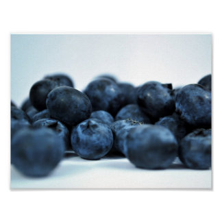 Fresh Ripe Blueberries Posters