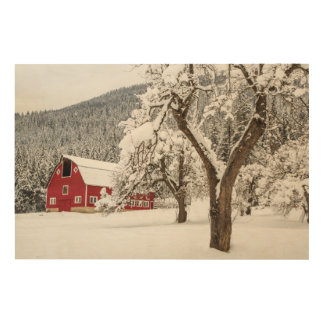 Fresh snow on red barn wood prints