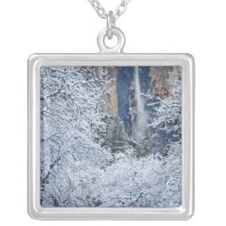 Fresh snowfall in the trees below Bridalveil Silver Plated Necklace